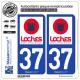 2 Autocollants plaque immatriculation Auto 37 Loches - Tourisme