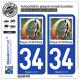 2 Autocollants plaque immatriculation Auto 34 Orthus - Pays