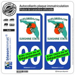 2 Autocollants plaque immatriculation Auto : Floride - MyFlorida